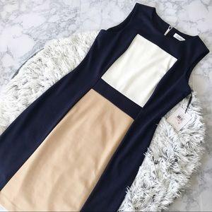 NWT Calvin Klein Color Block Knit Sheath Dress